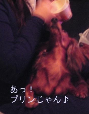 meru_oneda_02