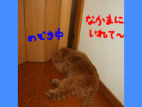 20070419210712.png