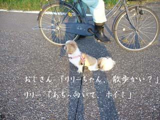 P1010029s.jog.jpg