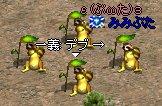 20060507040305.jpg