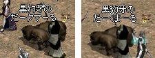 20061120022010.jpg