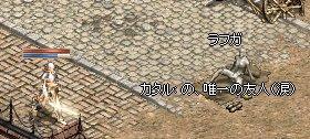 20070318145729.jpg