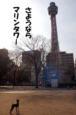 20061225164323.jpg