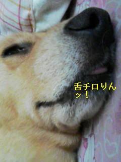 060618_1340~01.jpg