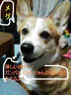 060923_1913~01.jpg