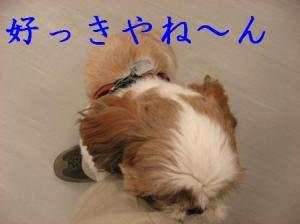 IMG_0760.jpg