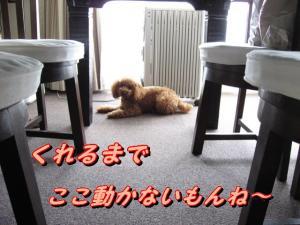 IMG_3058.jpg