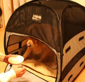 DOG BAGの中は、おいしいものがもらえる場所!