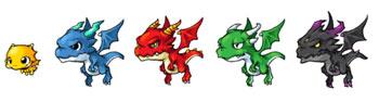 各種ドラゴン