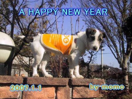 新年明けましておめでとう