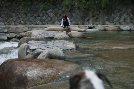 川の中でのもも(4)