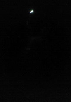 光る物体は街灯です