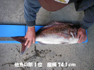 20061210tagyonobu1i.jpg