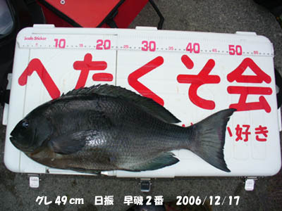 20061217gure49cm.jpg