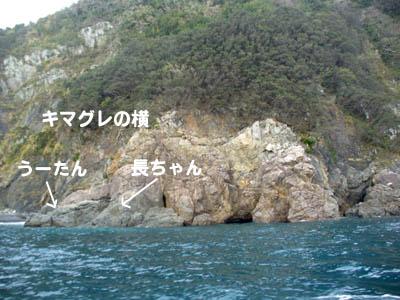20070108kimagureyoko01.jpg