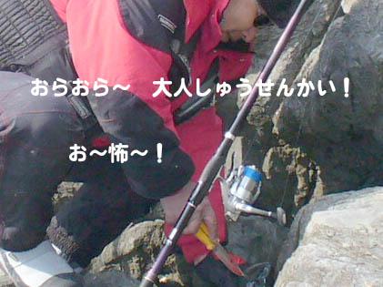 20070108u-tan02.jpg