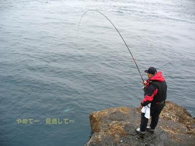 20070121u-tan02.jpg