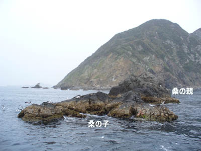 20070212kuwanoko.jpg