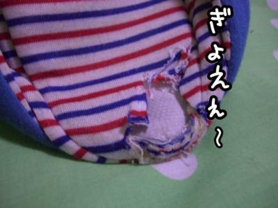 CIMG0810c.jpg
