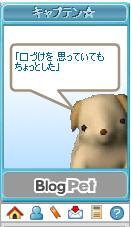 20070613070842.jpg