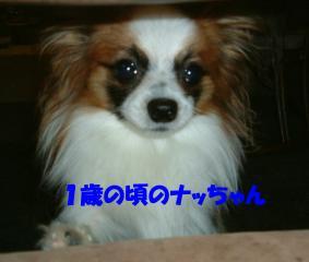 20070211110927.jpg