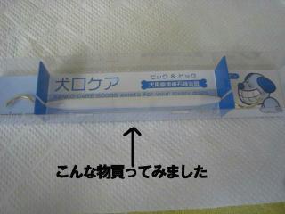 20070626140502.jpg