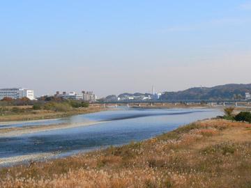 多摩川の下流を望む