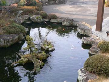 こんな池が家にあるといいなぁ