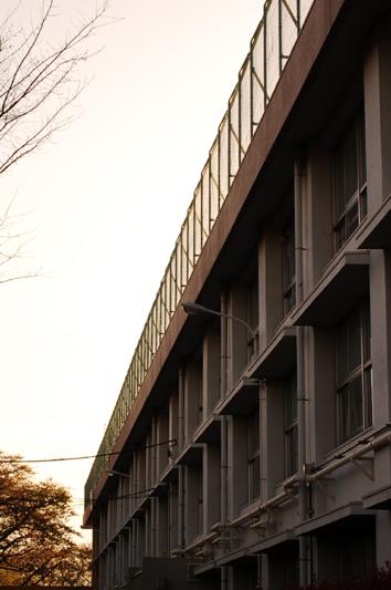 oizumi17c.jpg