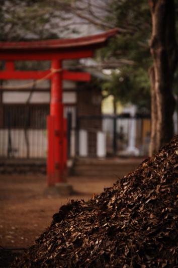 oizumi9c2.jpg