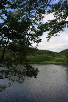 風景の写真1