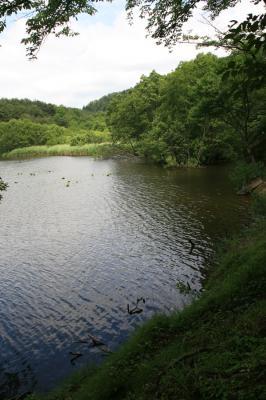 風景の写真2