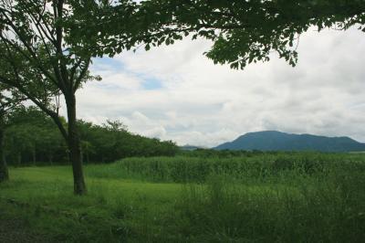 佐潟の風景1
