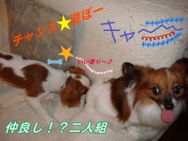 20070123123539.jpg