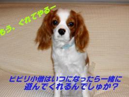 20070123123615.jpg