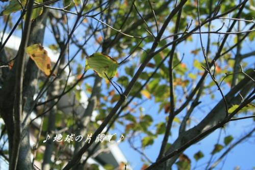 IMG_5860.jpg