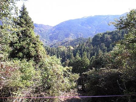 2007110409.jpg