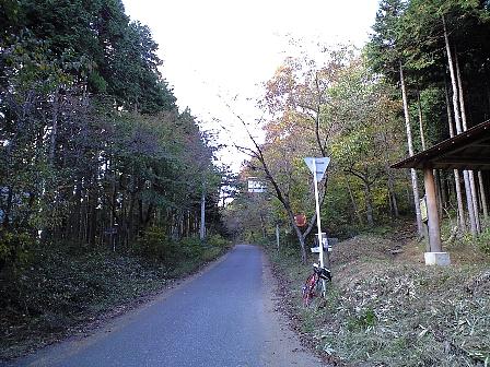 2007110418.jpg