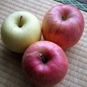りんご各種