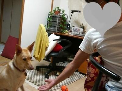 s-CIMG4689.jpg