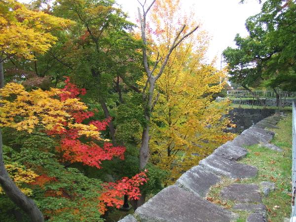 紅葉!!盛岡城跡公園