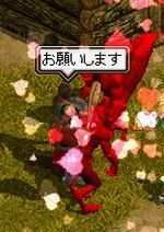 inu_matsuri03