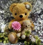 bear-new