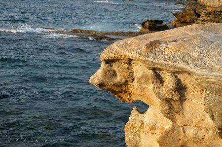 顔のような岩。