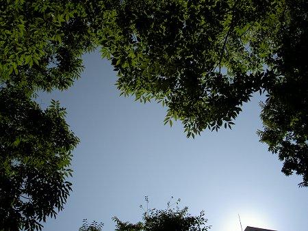 Today Sky 060824.