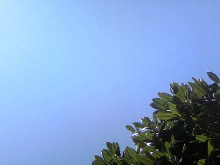 Today Sky 070724.