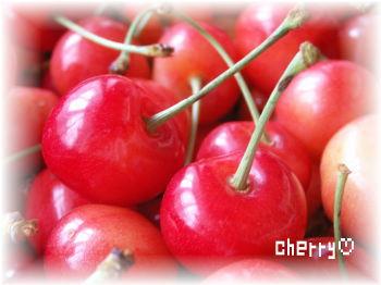 cherry♪