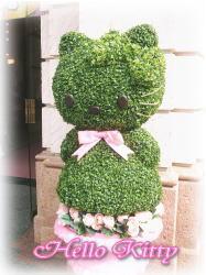 植木のキティちゃん