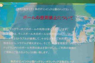 DSC_15122007-03-04_13-16-34.jpg