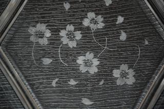 DSC_16892007-03-13_18-30-09.jpg